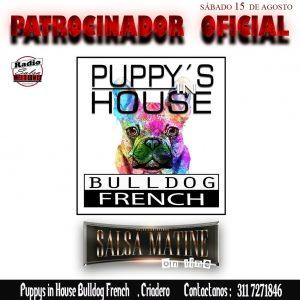 Pupys house patrocinador