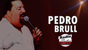 Lee más sobre el artículo El artista de la semana – Pedro Brull